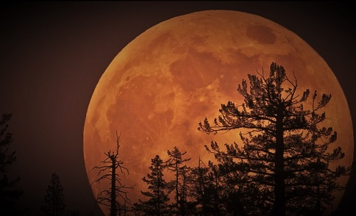 The Incredible SuperMoon