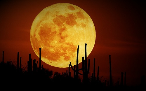 The Healing Power Of The Supermoon